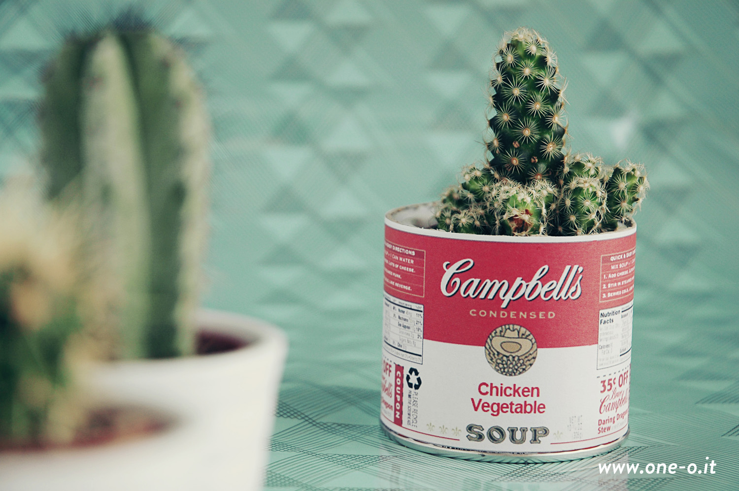 DIY Campbell's Soup Vintage Vase > One O